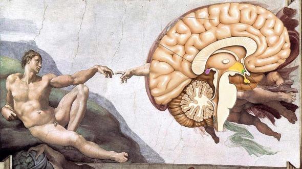 adams brain